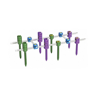 Spinal Pedicle Screw System